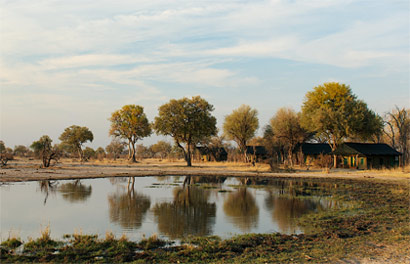 Bomani Safari Camp Hwange National Park Zimbabwe