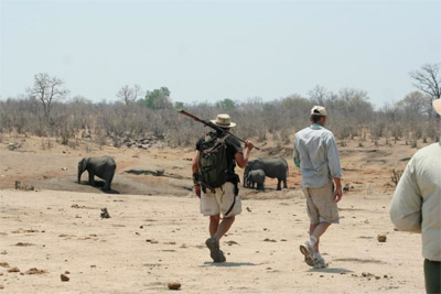 Hwange private camping in Hwange National Park - Zimbabwe