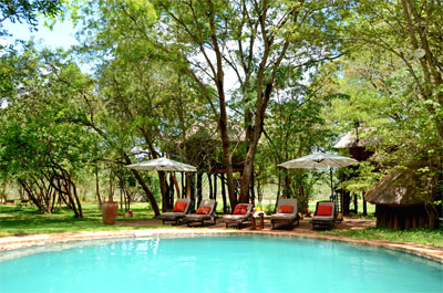 Ivory Lodge in Hwange National Park Zimbabwe