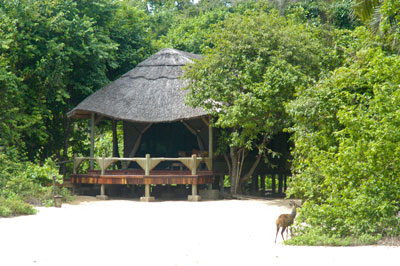 Kungwe Beach Lodge - Mahale Mountains