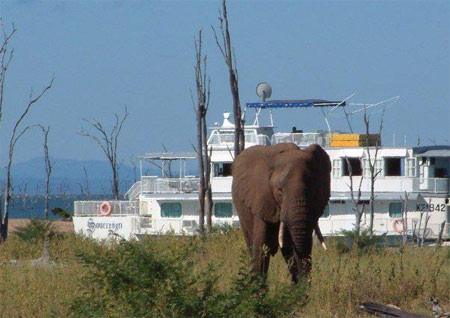 Lake kariba houseboat Zimbabwe